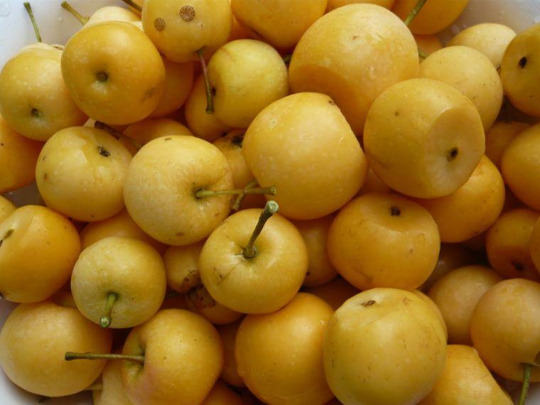 Простые моченые яблоки
