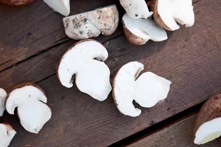 Белые грибы сушеные в духовке