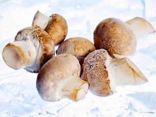 Заморозка продуктов питания: овощей, фруктов, ягод и грибов на зиму