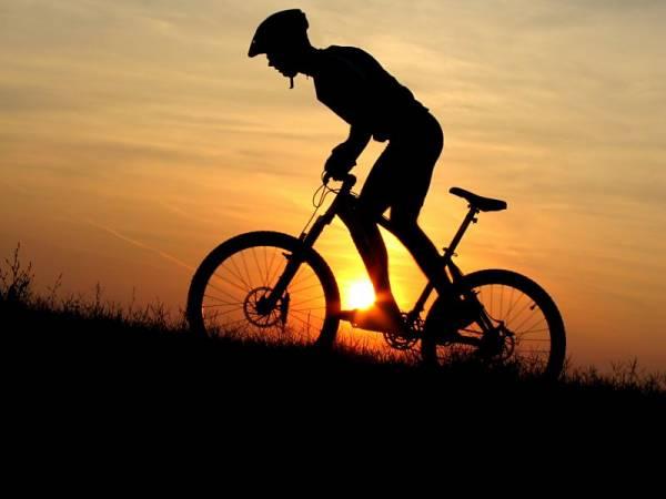 Пенисбилдинг базовые упражнения бесплатно