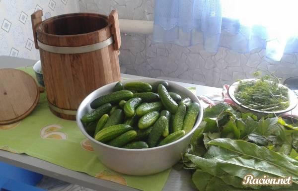 Рецепт Засолка огурцов в бочке