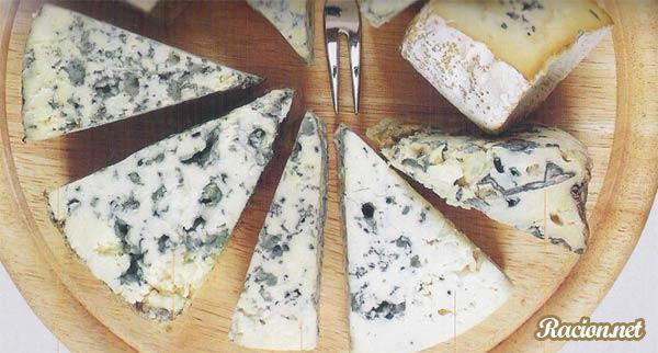 Плесень для сыра в домашних условиях 336